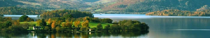 Loch Lomond green in summer - private tours Drymen Red Bus Co.